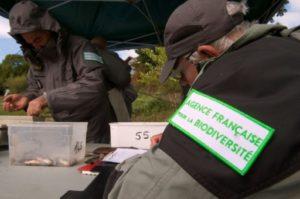 office chasse biodiversite