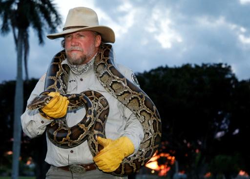 pythons floride nuit patrouille
