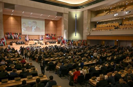 ONU traité harcelement travail violence