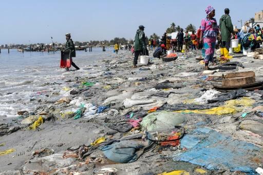 Déchets plastiques et poissons morts, le 1er juin 2019 à Dakar © AFP/Archives Seyllou