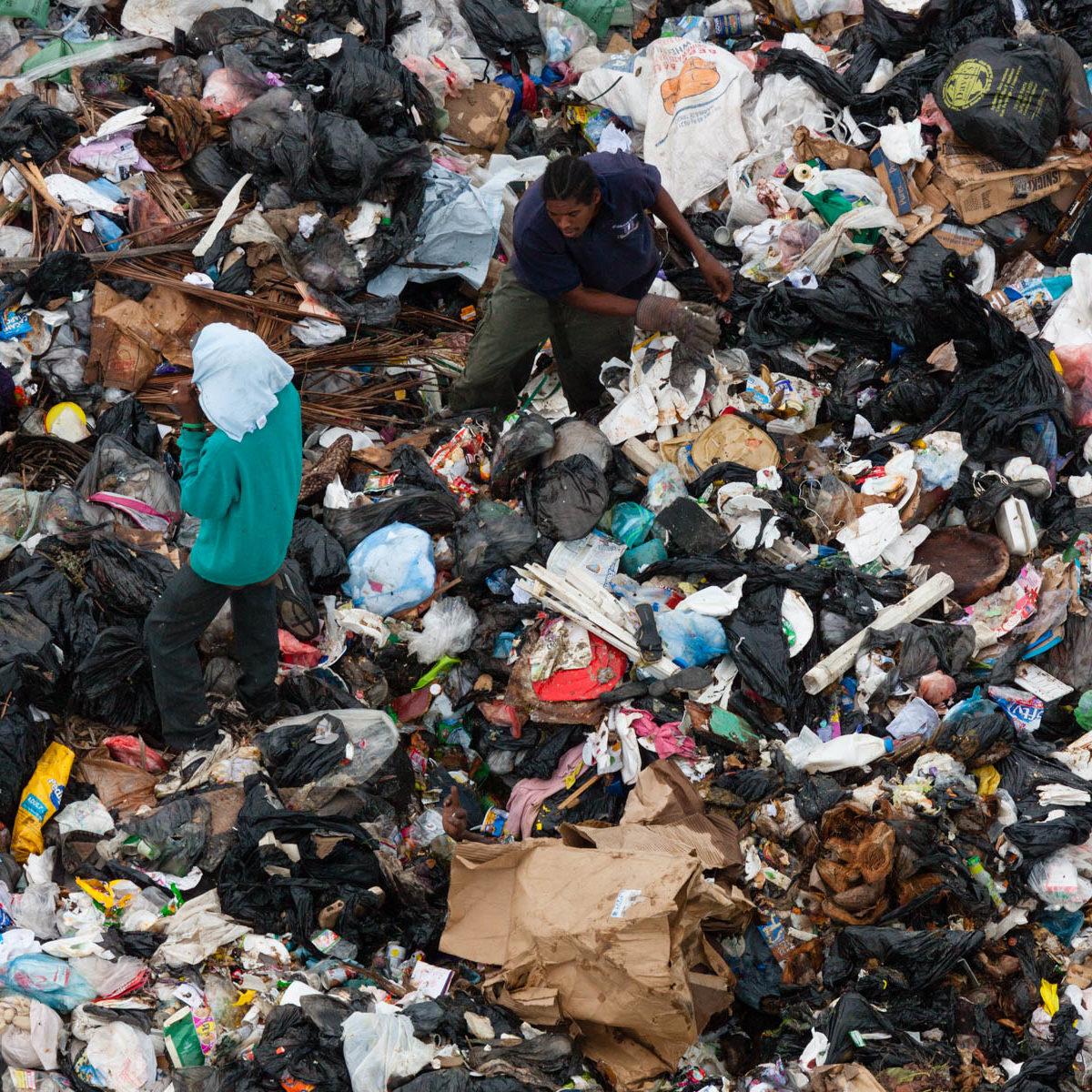 Décharge à Belize City, Belize (17°30' N - 88°14' O). : Dump at Belize City, Belize District, Belize (17°30' N, 88°14' W).