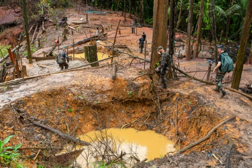 Des gendarmes et des membres de l'organisation de défense de l'environnement WWF arrivent sur un site d'orpaillage illégal, près du village de Cacao, à 60 km de Cayenne, le 10 juin 2019 © AFP jody amiet