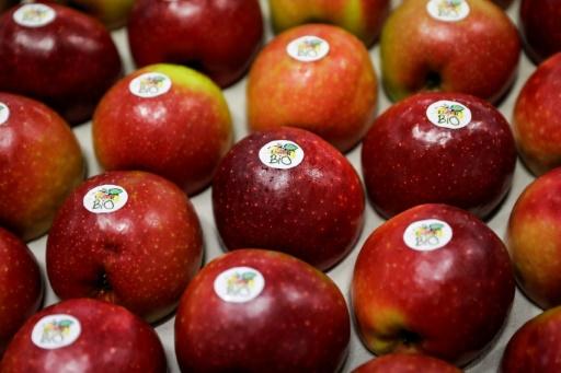 Des pommes bio dans une coopérative à Saint-Yrieix-la-Perche, dans la Haute-Vienne, le 21 décembre 2018 © AFP/Archives Thomas SAMSON