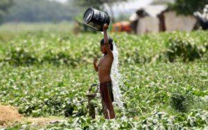 La chaleur extrême au Bihar, dans le nord de l'Inde, a fait 78 morts au cours des 48 dernières heures, selon un nouveau bilan © AFP/Archives Money SHARMA