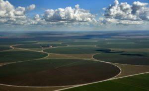 Des superficies agricoles à perte de vue à Formosa do Rio Preto, à l'ouest de l'Etat de Bahia. Vue aérienne le 29 mai 2019. © AFP NELSON ALMEIDA