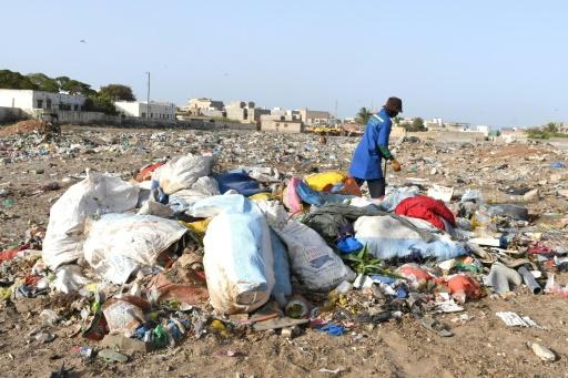 Un volontaire collecte des sacs de déchets à Rufisque, près de Dakar, le 31 mai 2019 © AFP Seyllou