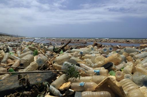 Les pays du G20 devraient parvenir à un accord pour réduire les déchets plastiques en milieu marin lors d'une réunion dimanche 16 juin 2019 au Japon © AFP/Archives JOSEPH EID