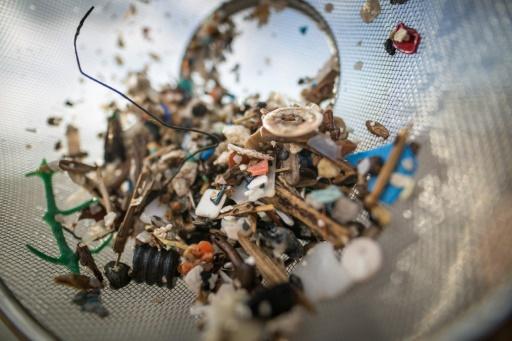 Les humains ingèrent et respirent des dizaines de milliers de particules de plastique chaque années, selon des recherches © AFP/Archives DESIREE MARTIN