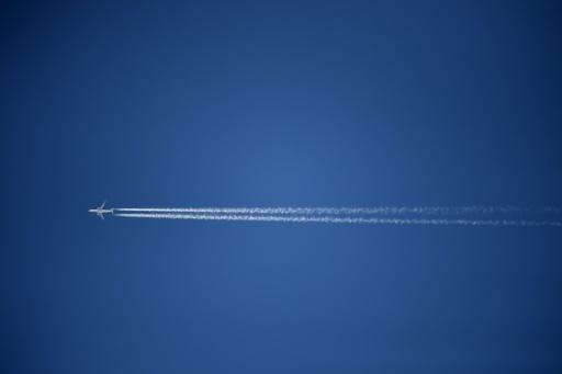 L'industrie aéronautique carbure pour mettre dans le ciel un avion propre © AFP/Archives GABRIEL BOUYS