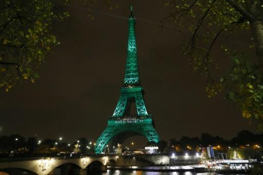 La Tour Eiffel illuminée de vert pour les accords de Paris le 4 novembre 2016 © AFP/Archives PATRICK KOVARIK