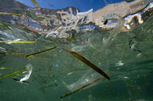 Des objets en plastique flottent dans la mer devant Marseille, le 30 mai 2019 © AFP/Archives Boris HORVAT