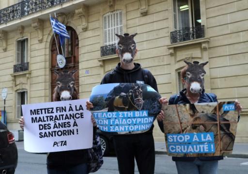 Des défenseurs des animaux manifestent devant l'ambassade de Grèce à Paris, le 13 juin 2019, pour réclamer la fin de l'exploitation des ânes et des mules sur l'île grecque de Santorin © AFP JACQUES DEMARTHON