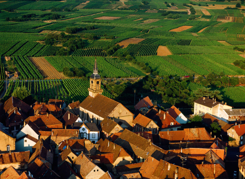 Village viticole de Heiligenstein, Bas-Rhin, France (48°25' N - 7°27' E).