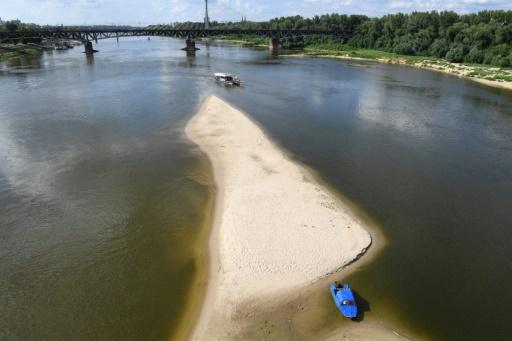 La Vistule à Varsovie a atteint un niveau historiquement bas à cause de la sécheresse © AFP/Archives Janek SKARZYNSKI