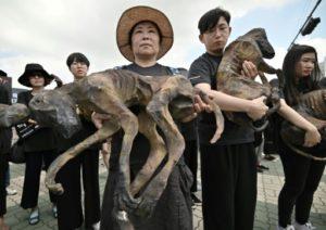 Des militants de la cause animale manifestent contre la consommation de viande canine en arborant des figurines représentant des chiens, à Séoul le 12 juillet 2019 © AFP Jung Yeon-je