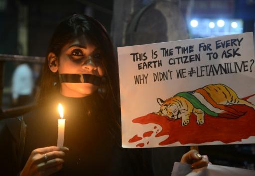 Une militante de la cause animale brandit une affiche et une bougie pendant une marche silencieuse contre la mort de la tigresse Avni, qui avait mangé des humains dans l'Etat de Maharashtra (ouest de l'Inde) le 11 novembre 2018 © AFP/Archives DIPTENDU DUTTA