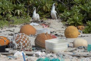 Des déchets sur une plage de l'île Henderson, dans le Pacifique, le 10 juin 2019 © STUFF/AFP/Archives Iain McGregor