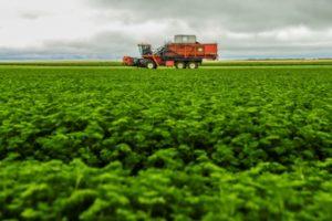 Les aides publiques à l'agriculture dans tous les pays du monde devraient être réorientées vers la défense du climat, de l'environnement ou la lutte contre le gaspillage, recommande l'OCDE © AFP/Archives ALAIN JOCARD