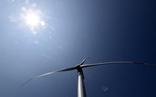 """le Sénat entend muscler à partir de mardi le projet de loi """"énergie-climat"""" porté par un François de Rugy en difficulté © AFP/Archives Tobias SCHWARZ"""