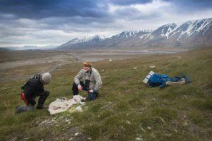 Photo non datée fournie par l'Institut polaire norvégien montrant deux scientifiques près du cadavre d'un renne sur l'archipel norvégien du Svalbard, dans l'Arctique © NORWEGIAN POLAR INSTITUTE/AFP Elin Vinje JENSSEN, Handout