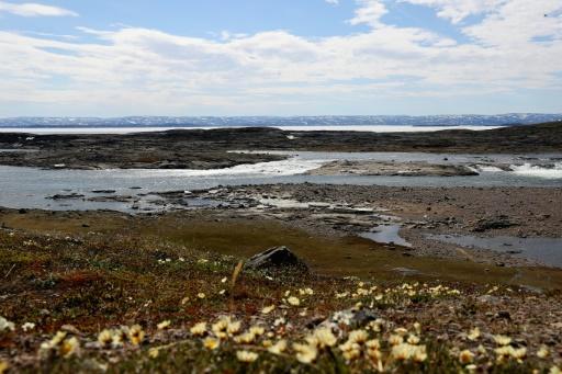 La côte près d'Iqaluit, dans le nord-est canadien, le 29 juin 2017 © Chris Jackson Collection/Getty Images/AFP Chris Jackson