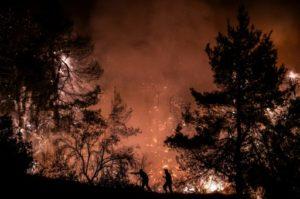 Des pompiers grecs tentent de venir à bout d'un important incendie près du village de Macrymalli, sur l'île d'Eubée, le 13 août 2019 © AFP ANGELOS TZORTZINIS