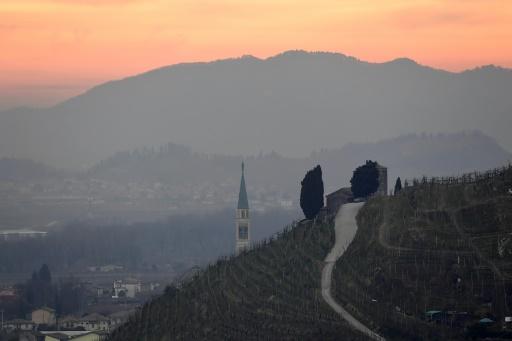 Des vignobles près de Farra di Soligo, dans le nord de l'Italie, le 26 février 2019 © AFP/Archives Miguel MEDINA