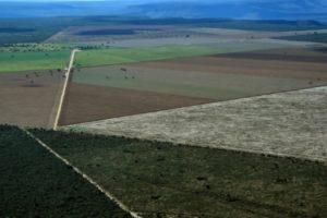 Le secteur agricole a été responsable à lui seul de plus des deux tiers (71%) des émissions de CO2 du Brésil en 2017 © AFP/Archives NELSON ALMEIDA