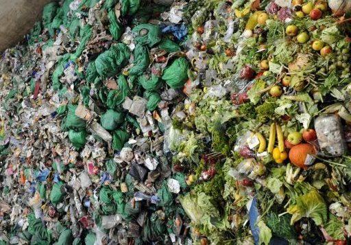 25 à 30% de la production totale de nourriture est gaspillée © AFP/Archives JEAN-CHRISTOPHE VERHAEGEN