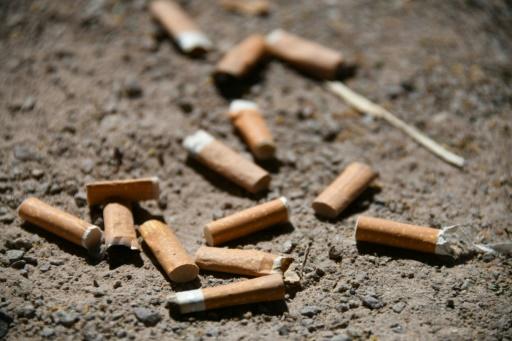 Le maire d'une commune forestière de Gironde a pris un arrêté municipal interdisant de fumer en voiture si elle n'est pas équipée de cendrier, tandis qu'une sénatrice a réclamé au gouvernement le retour des cendriers dans les voitures © AFP/Archives SEBASTIEN BOZON