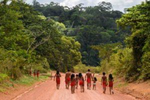 Des indiens waiapi dans leur réserve de l'Etat d'Amapa, le 12 octobre 2017 au Brésil © AFP Apu Gomes