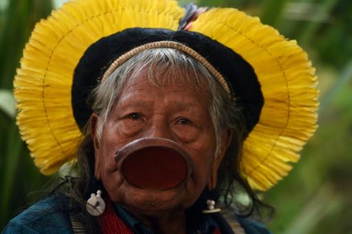 Amazonie, Raoni, festival bordeaux