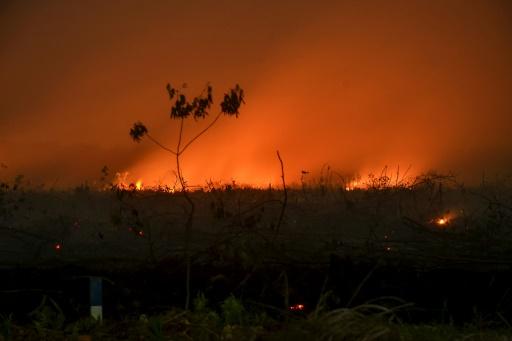 incendies indonésie