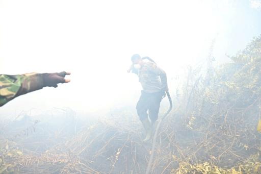 indonésie feu