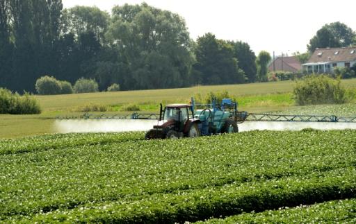 consultation epandage pesticides avis