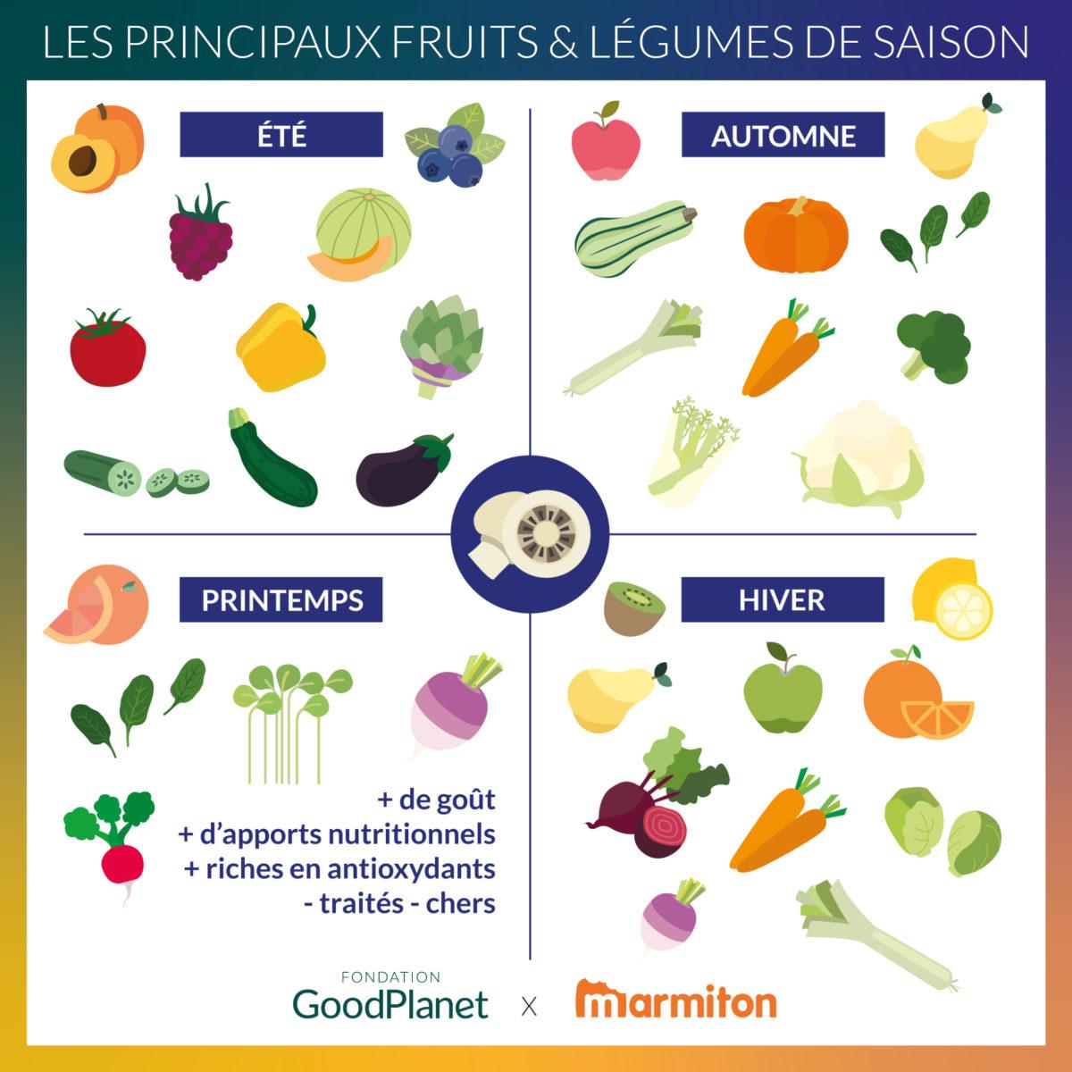 infographie les principaux fruits et légumes de saison