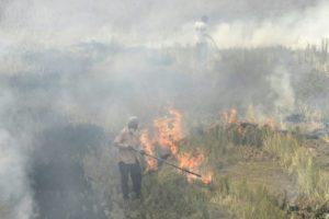 pollution extreme nord de l'inde