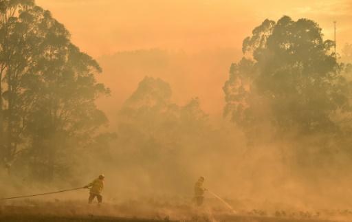 australie feux