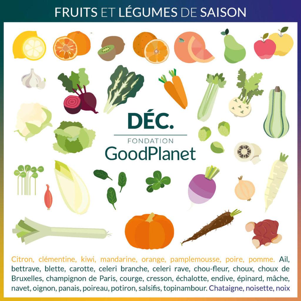 Illustration fruits et légumes de saison au mois de décembre