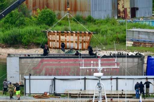 russie beluga liberation