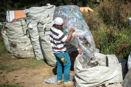 mexique revolte ecologique cheran