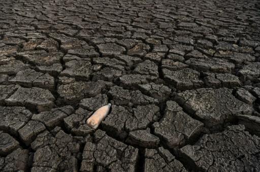 bulgarie pénurie d'eau