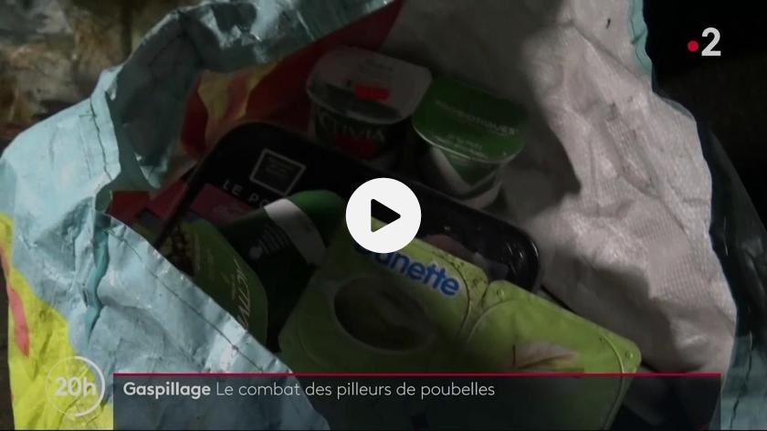 La lutte des pilleurs de poubelles face au gaspillage alimentaire