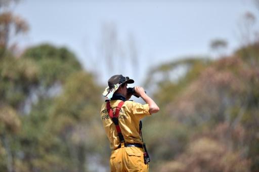 australie feux de forets