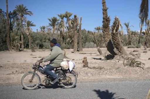 maroc oasis secheresse