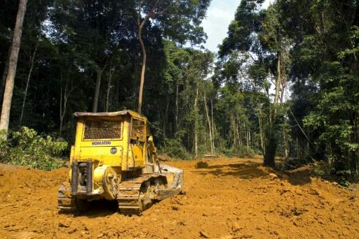 banques françaises deforestation