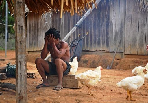 indigene amazonie