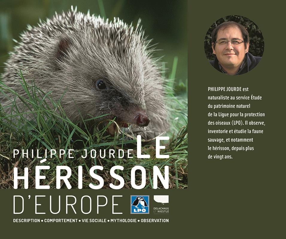 herisson d'europe nourrir herisson donner a manger herissons