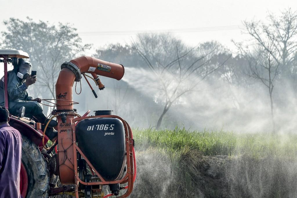 semences traitées aux pesticides neonicortinoides graiens pesticides soja mais