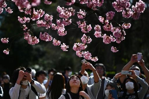 mars plus chaud mois climat